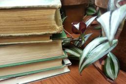 books_bundle2
