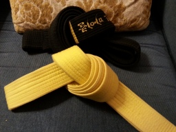 At the top is my black belt.  Beneath it is my yellow belt, which in may ways is more sacred to me than the black.  Ask me about it sometime and I'll explain.
