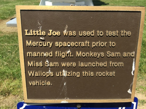 More about Little Joe